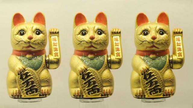 cats_000010