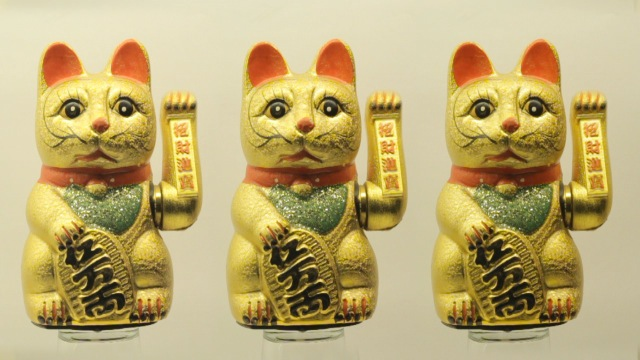 cats_000011