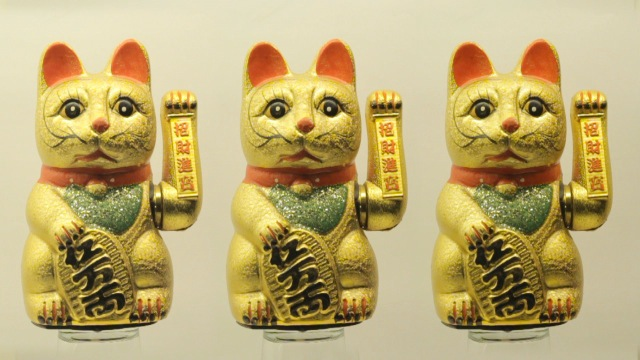 cats_000012