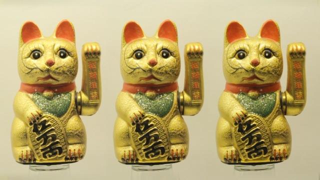 cats_000017
