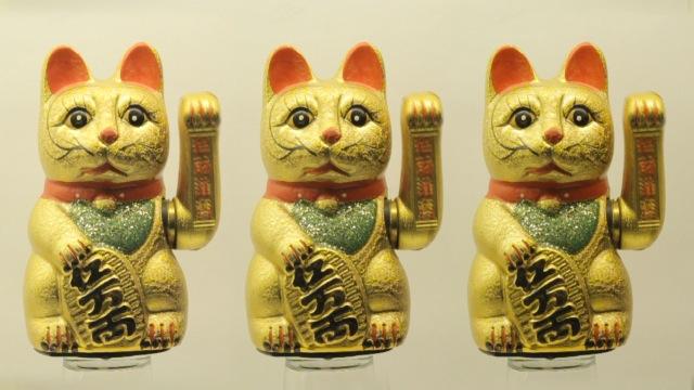 cats_000019