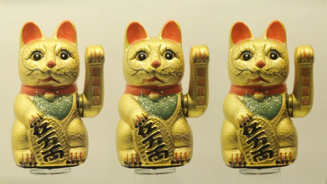 cats_000021
