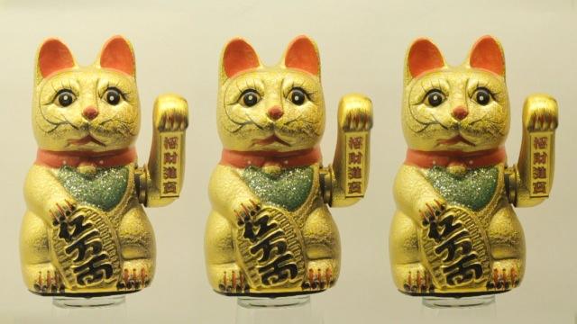 cats_000028