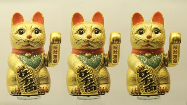 cats_000031